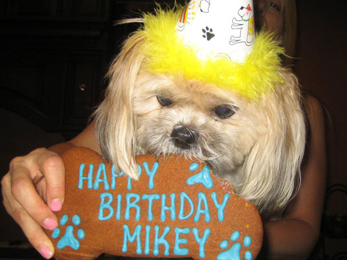 Mikey's 3rd B-day